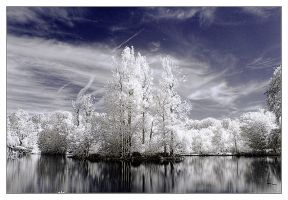 reflection IR by konovalov
