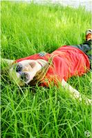 lying on the grass by SmilingSnail