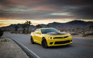 2014 Chevrolet Camaro 1LE by ThexRealxBanks