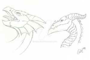 Dragon Sketches by OEmilyThePenguinO