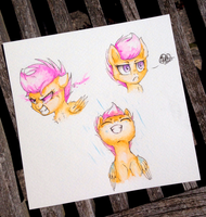 Scoots {Fun Sketches #1} by MyLittleSuki