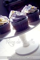Chocolate Cupcakes by harleshinn