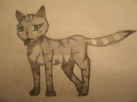 Echosong- The SkyClan Med. Cat by YoukaiWarrior