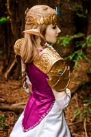 Princess Zelda: Twilight Princess by ForeverAdel