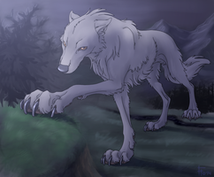 big blanch wolf by flowerewolf