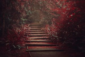 Steps by xKimJoanne