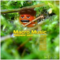 Macro Music Wallpapers by VovanR