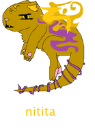 Nitita by Illusions50