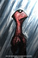 spidy rain by AndrewTunney