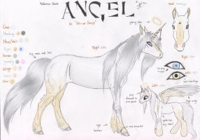 Angel: Horse Reference Sheet by Shehy