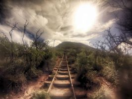 Koko Head | Hawaii I by StevenZybert