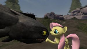 Fluttershy meets Toothless by BB-K
