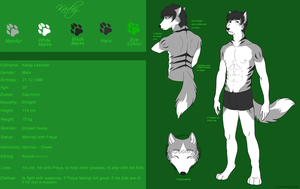 Kadaj Ref v1.0 by Freewolf7