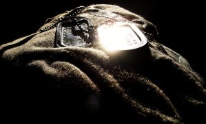 Dogtag in the sun by Ryan20