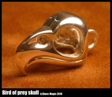 Bird of prey skull by Dans-Magic