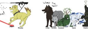 Wolf characters by equusamor