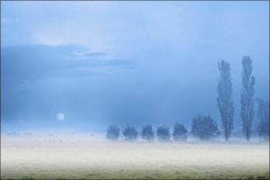 Landscape by irenephotography