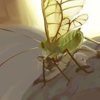 Aphid painting by distome