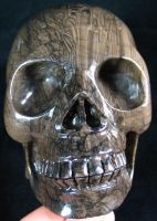 Coffee Stone Skull 001c by SKULLKRAFT