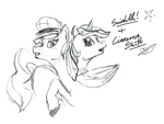 Scintilla And Cinnamon Swift by archonix