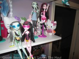 Monster High Collection Update 8 by Childofwestwind