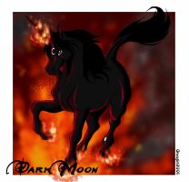 Dark Moon - The Firebringer by Orcagirl2001