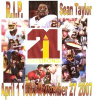 Sean Taylor Tribute by bigb93
