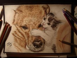 Cat and Dog, best friends:) by Huyen-Linh