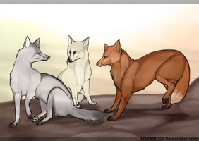 fre american foxes. by florawolf