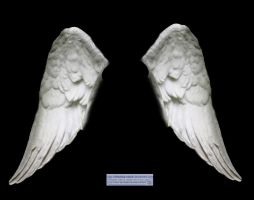 Wings: white angel 02 by elisafox-stock