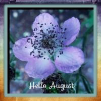 Hello August... by ansdesign