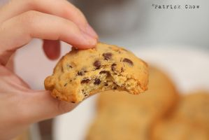 Chocolate cookies 1 by patchow