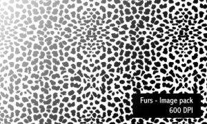 Furs - Image Pack by screentones