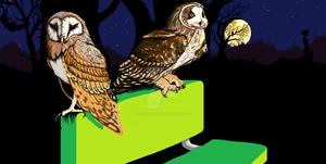 Night To the Owls by jsketchyfingers