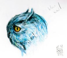 Owl by Zooey182
