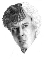 Benedict Cumberbatch - WIP 1 by CookieCakePotatoShoe