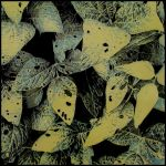Patterns of Nature - Ivy by WorkhorseStudio