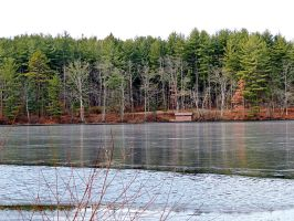 Laurel Lake In Winter 01 by TemariAtaje