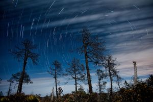Star trails by emiliogtz