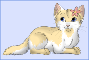 Desert Rose as a kitten by Perlenmond