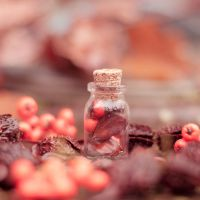 Autumn Bottle by Pamba