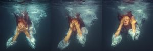 Underwater triptych by fly10