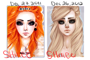 art 1 year timeline by SHINSHINee