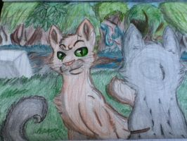 Oakheart and Bluestar by Infected-Shadows
