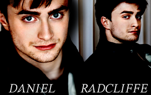 Daniel Radcliffe Wallpaper 2 by xmcpheeverx