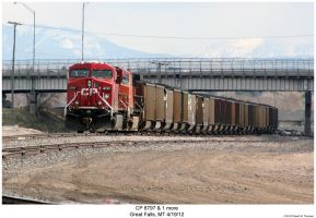 CP 8797 + a BNSF AC44CW by hunter1828
