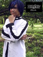 Jellal - FairyTail by Aienm
