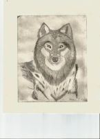 Wolf Engraving by AceOfSpades0