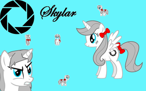 Skylar The Alicorn Wallpaper by World-Detective-L