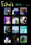 Art Summary of 2014 by AwesomeEchosong